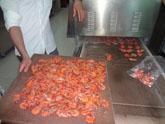 微波对虾烘烤机,对虾烘烤设备