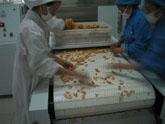 食品膨化机,食品膨化设备