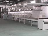工业微波炉,工业微波设备