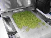 农副产品微波杀青设备,微波杀青干燥设备