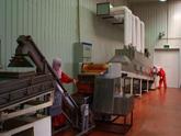天然乳胶制品微波烘干机,乳胶制品微波烘干机