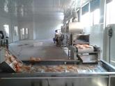南乳花生烘烤设备,南乳花生烘烤机